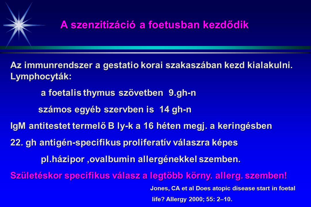 Az immunrendszer a gestatio korai szakaszában kezd kialakulni. Lymphocyták: a foetalis thymus szövetben 9.gh-n a foetalis thymus szövetben 9.gh-n szám