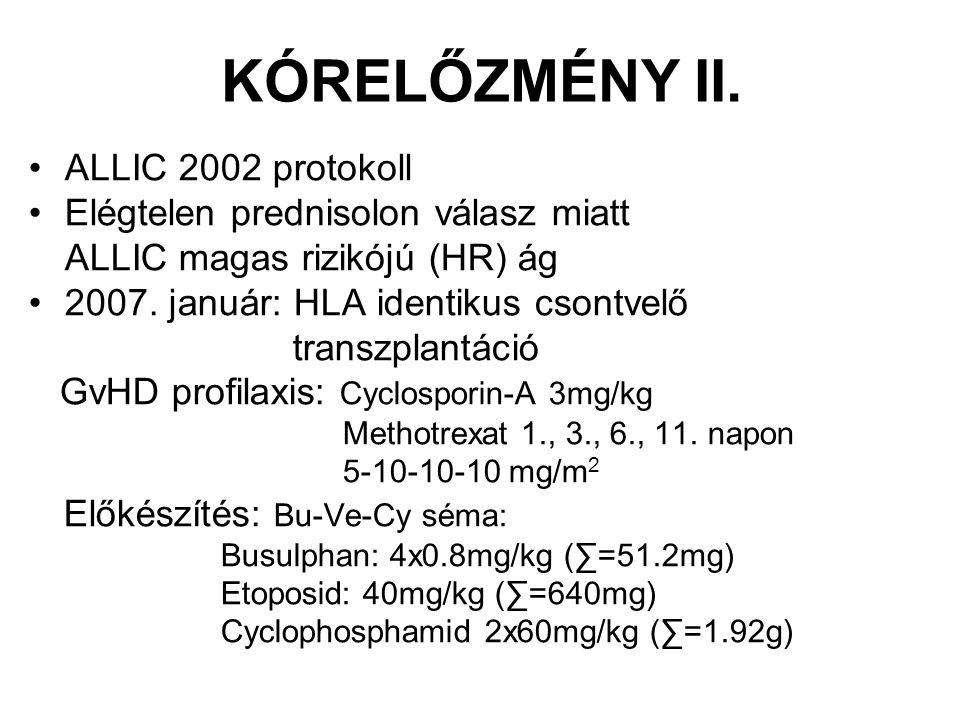 KÓRELŐZMÉNY II. ALLIC 2002 protokoll Elégtelen prednisolon válasz miatt ALLIC magas rizikójú (HR) ág 2007. január: HLA identikus csontvelő transzplant