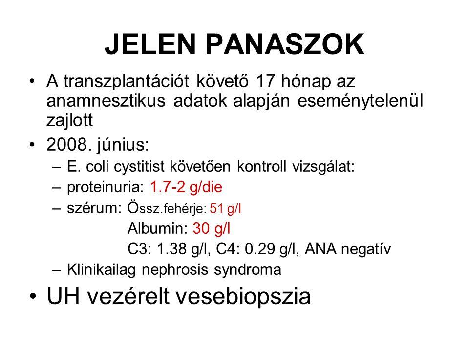 JELEN PANASZOK A transzplantációt követő 17 hónap az anamnesztikus adatok alapján eseménytelenül zajlott 2008. június: –E. coli cystitist követően kon