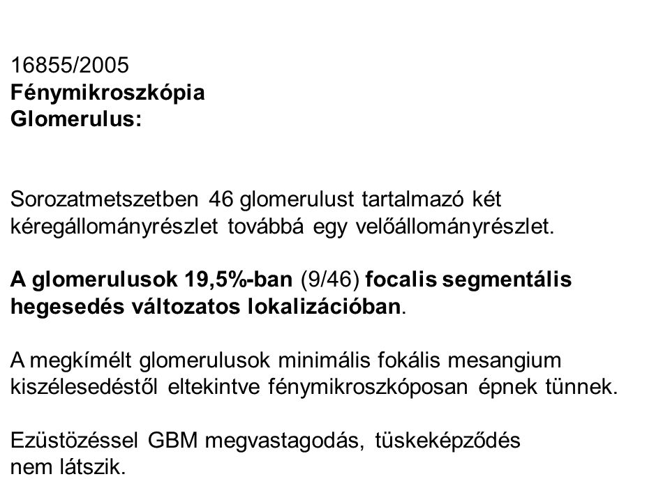 16855/2005 Fénymikroszkópia Glomerulus: Sorozatmetszetben 46 glomerulust tartalmazó két kéregállományrészlet továbbá egy velőállományrészlet. A glomer