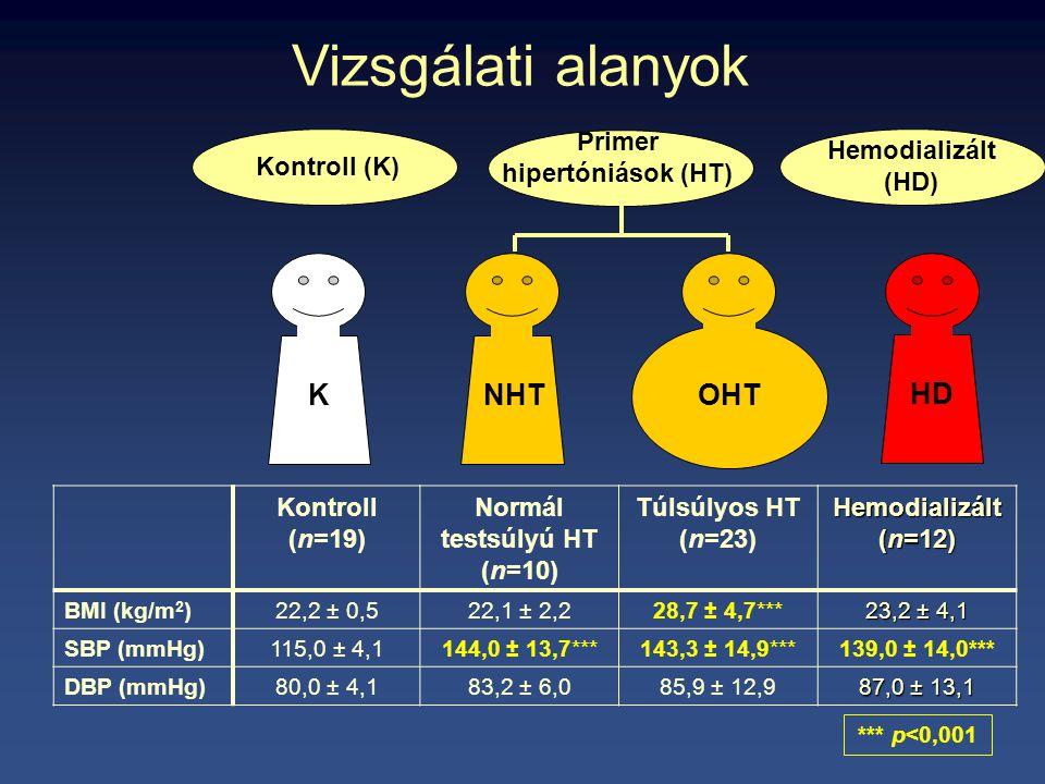KNHT OHT HD Vizsgálati alanyok Kontroll (K) Hemodializált (HD) Primer hipertóniások (HT) Kontroll (n=19) Normál testsúlyú HT (n=10) Túlsúlyos HT (n=23