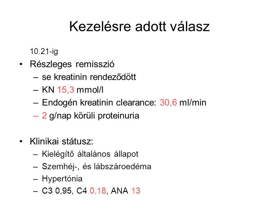 Kezelésre adott válasz 10.21-ig Részleges remisszió –se kreatinin rendeződött –KN 15,3 mmol/l –Endogén kreatinin clearance: 30,6 ml/min –2 g/nap körül