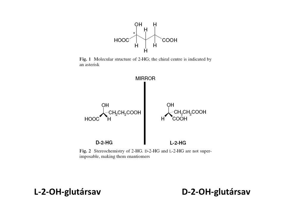 L-2-OH-glutársavD-2-OH-glutársav