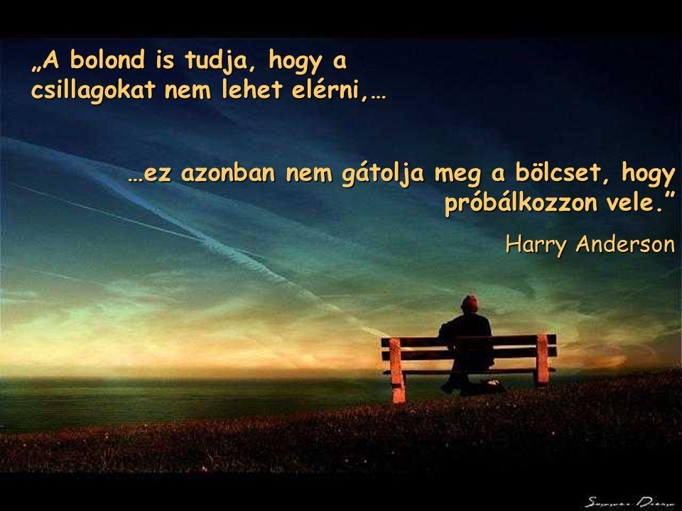 """""""A bolond is tudja, hogy a csillagokat nem lehet elérni,… …ez azonban nem gátolja meg a bölcset, hogy próbálkozzon vele."""" Harry Anderson"""