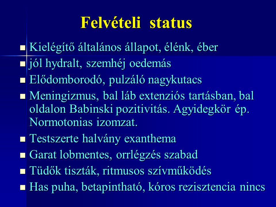 Felvételi status Kielégítő általános állapot, élénk, éber Kielégítő általános állapot, élénk, éber jól hydralt, szemhéj oedemás jól hydralt, szemhéj o