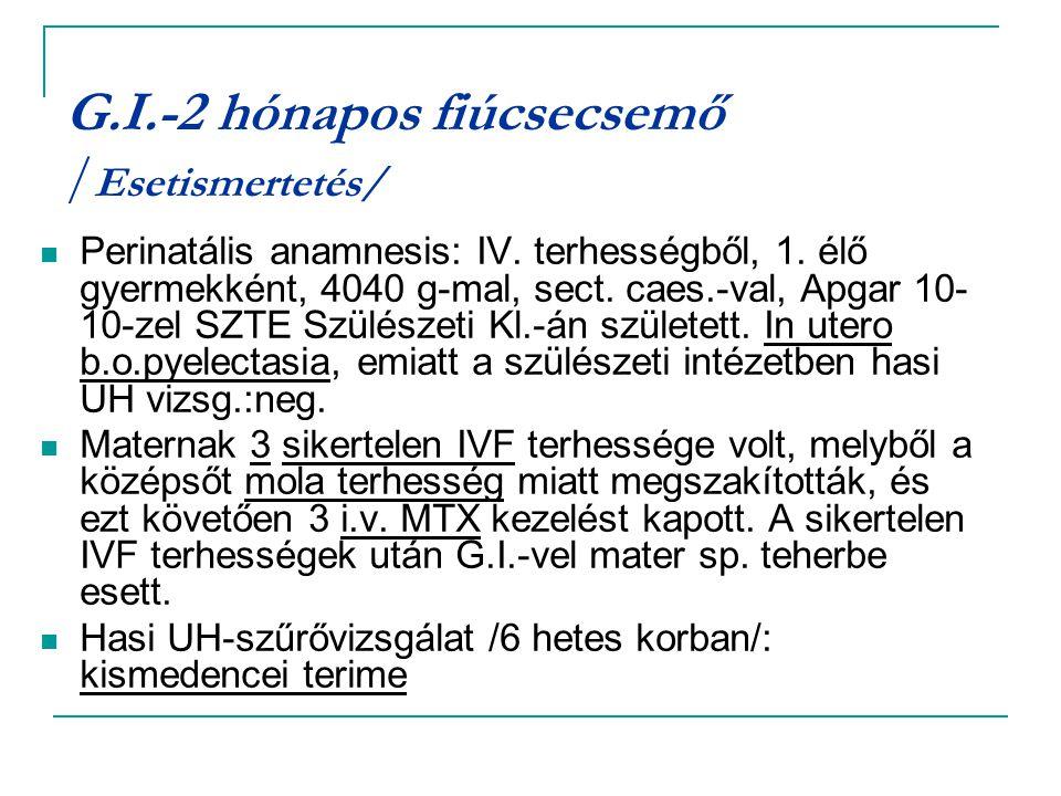 G.I.-2 hónapos fiúcsecsemő / Esetismertetés/ Perinatális anamnesis: IV. terhességből, 1. élő gyermekként, 4040 g-mal, sect. caes.-val, Apgar 10- 10-ze