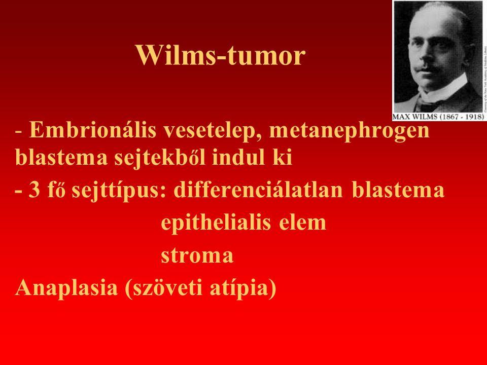 Stádium Staging (National Wilms Tumor Study Group) Stage I: vesén belüli elhelyezkedés, teljesen eltávolítható tumor, eltávolítás közben a vesetok intakt marad Stage II: a tumor a vese környezetére ráterjed (nyirokcsomók, nagyerek), de teljesen eltávolítható Stage III: a tumor nem távolítható el teljes egészében, a hasüregben reziduális tumor marad, vagy a vesetok műtét közben megreped Stage IV: távoli, hematogén áttétek (tüdő, máj, agy, csont) Stage V: bilateralis megjelenés