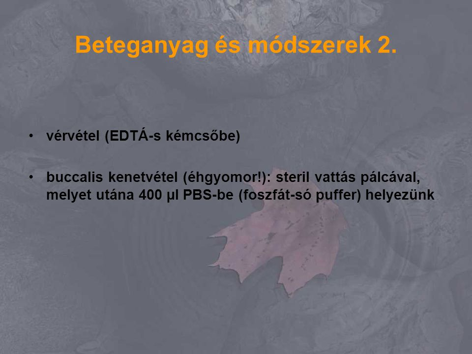 Beteganyag és módszerek 2. vérvétel (EDTÁ-s kémcsőbe) buccalis kenetvétel (éhgyomor!): steril vattás pálcával, melyet utána 400 µl PBS-be (foszfát-só
