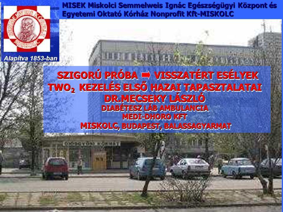 MISEK Miskolci Semmelweis Ignác Egészségügyi Központ és Egyetemi Oktató Kórház Nonprofit Kft-MISKOLC SZIGORÚ PRÓBA VISSZATÉRT ESÉLYEK TWO 2 KEZELÉS EL