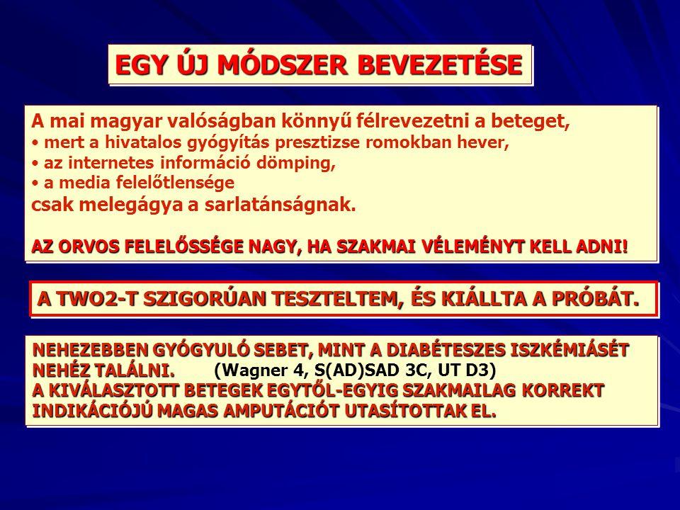 EGY ÚJ MÓDSZER BEVEZETÉSE A mai magyar valóságban könnyű félrevezetni a beteget, mert a hivatalos gyógyítás presztizse romokban hever, az internetes i
