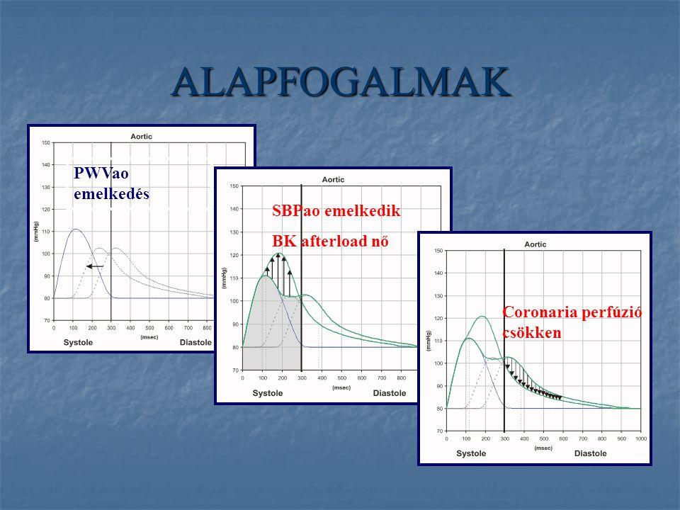 ALAPFOGALMAK PWVao emelkedés SBPao emelkedik BK afterload nő Coronaria perfúzió csökken
