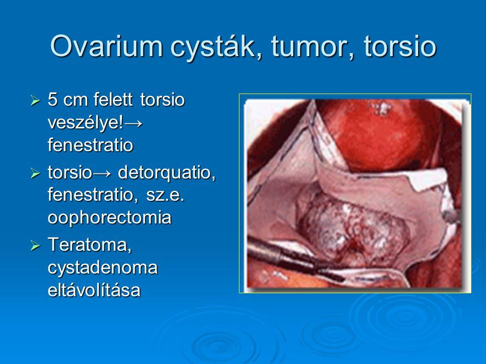 Ovarium cysták, tumor, torsio  5 cm felett torsio veszélye!→ fenestratio  torsio→ detorquatio, fenestratio, sz.e. oophorectomia  Teratoma, cystaden