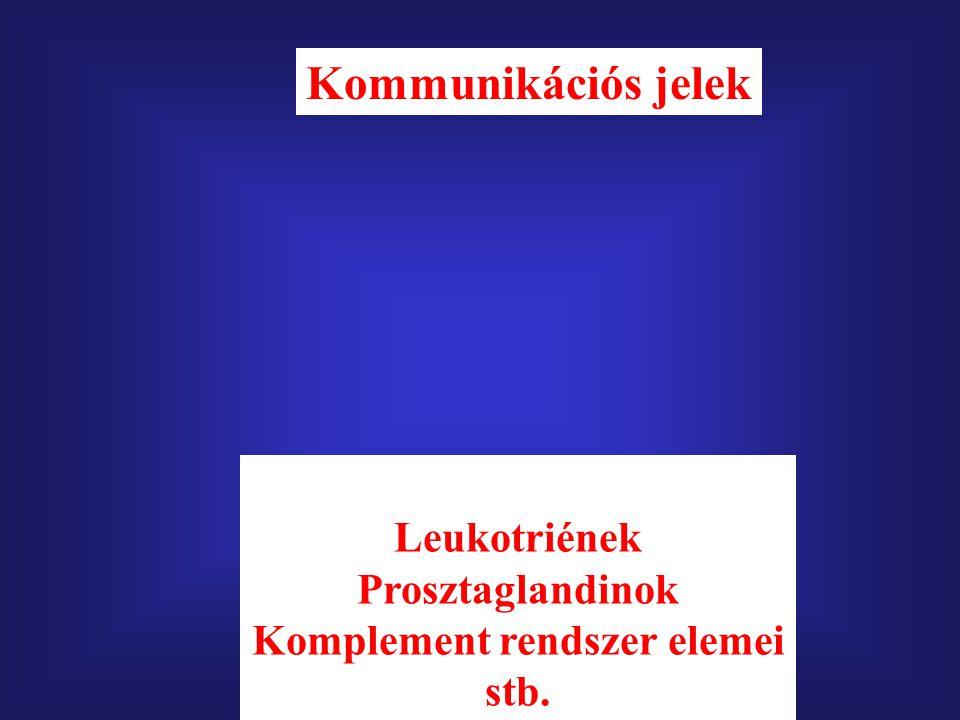 Citokinek Leukotriének Prosztaglandinok Komplement rendszer elemei stb. Kommunikációs jelek