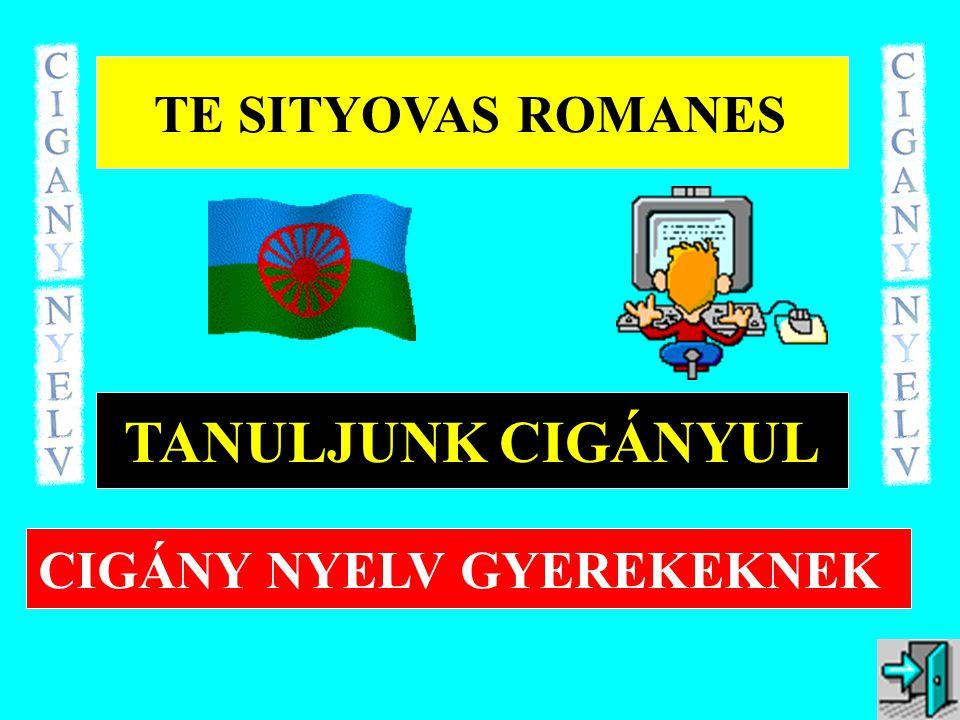 TE SITYOVAS ROMANES TANULJUNK CIGÁNYUL CIGÁNY NYELV GYEREKEKNEK