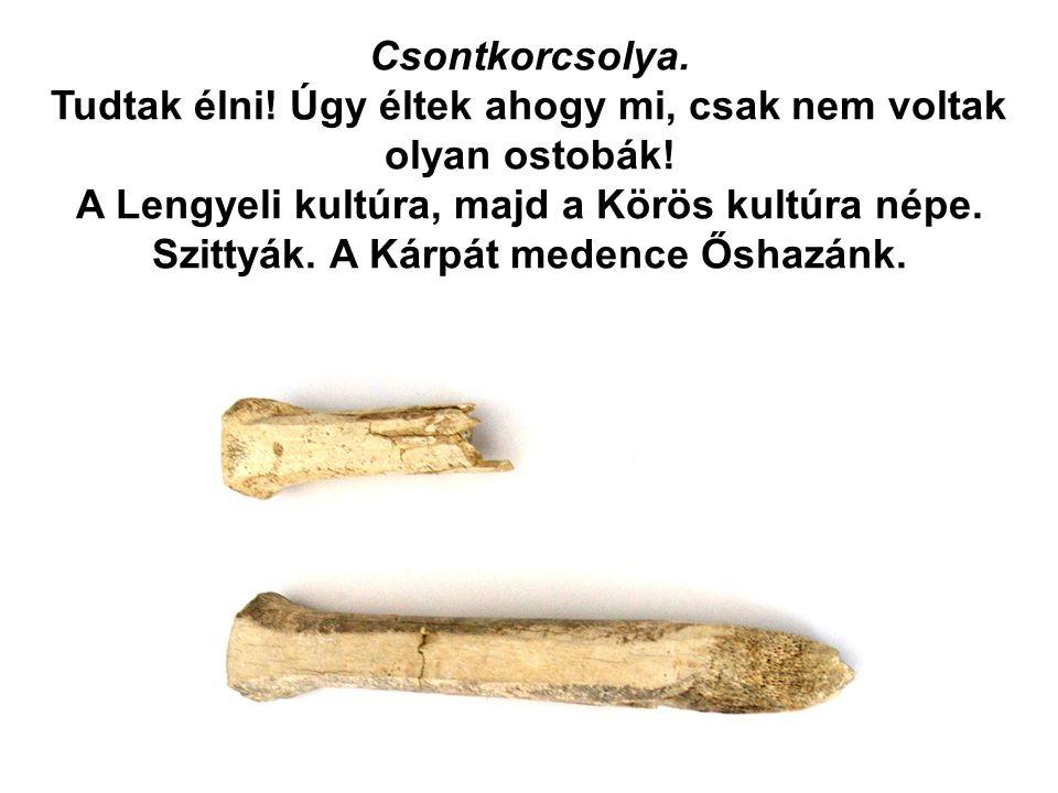 Csontkorcsolya. Tudtak élni! Úgy éltek ahogy mi, csak nem voltak olyan ostobák! A Lengyeli kultúra, majd a Körös kultúra népe. Szittyák. A Kárpát mede