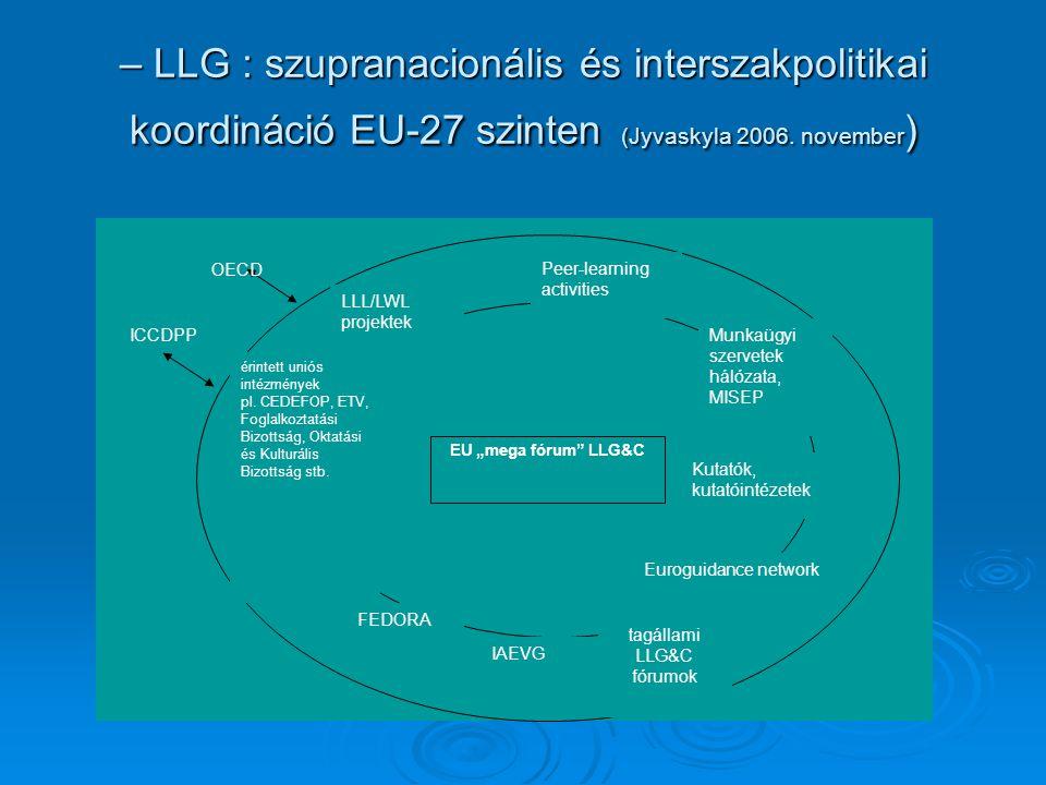 – LLG : szupranacionális és interszakpolitikai koordináció EU-27 szinten (Jyvaskyla 2006.