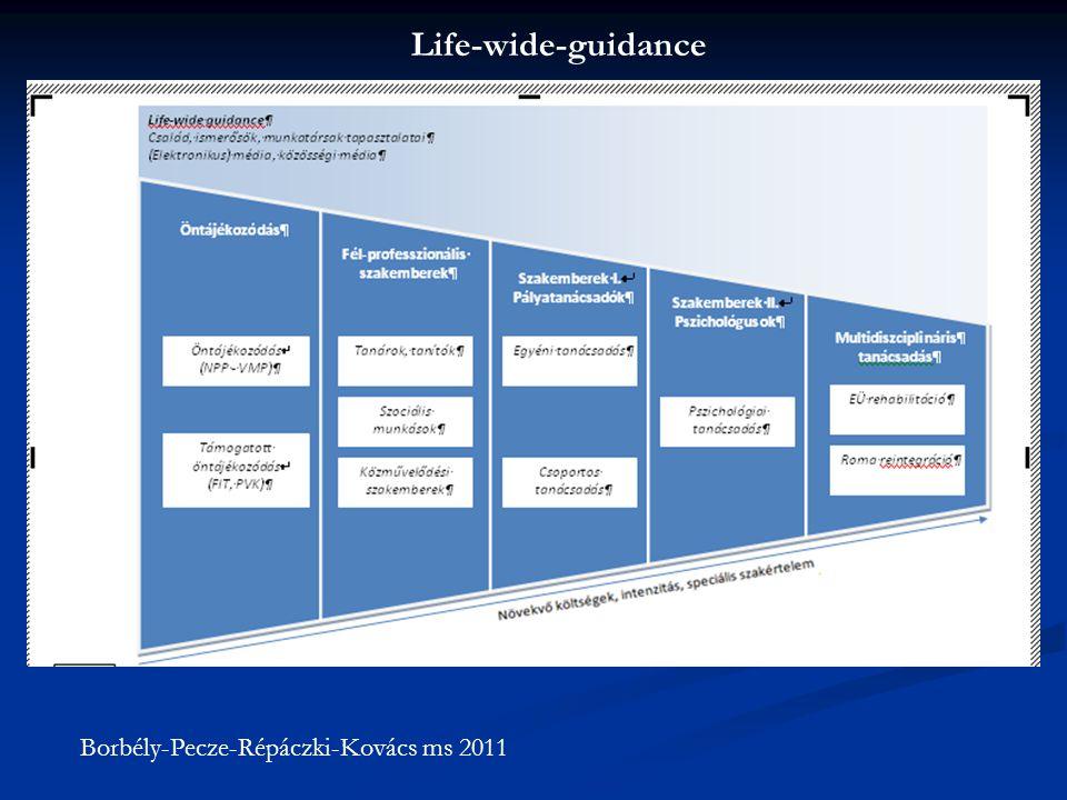 Borbély-Pecze-Répáczki-Kovács ms 2011 Life-wide-guidance