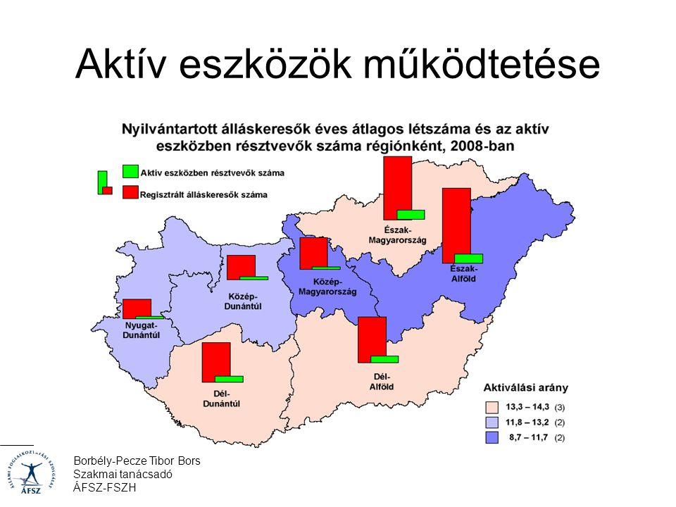 Borbély-Pecze Tibor Bors Szakmai tanácsadó ÁFSZ-FSZH Aktív eszközök működtetése