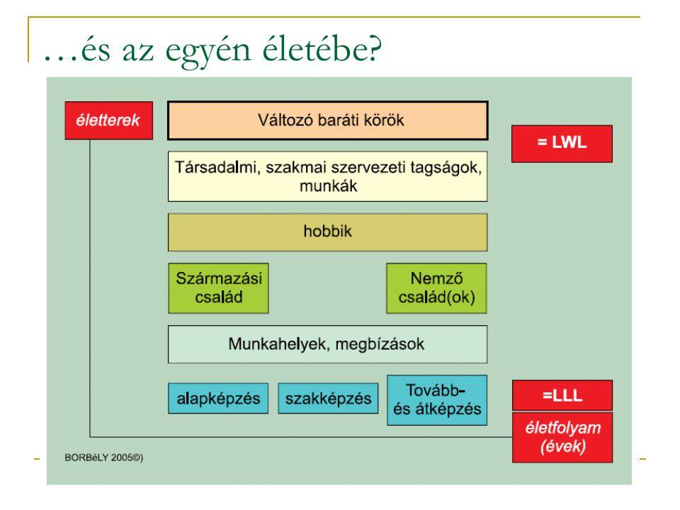 Mit jelen egy kompetencia alapú közvetítőrendszer a gyakorlatban?