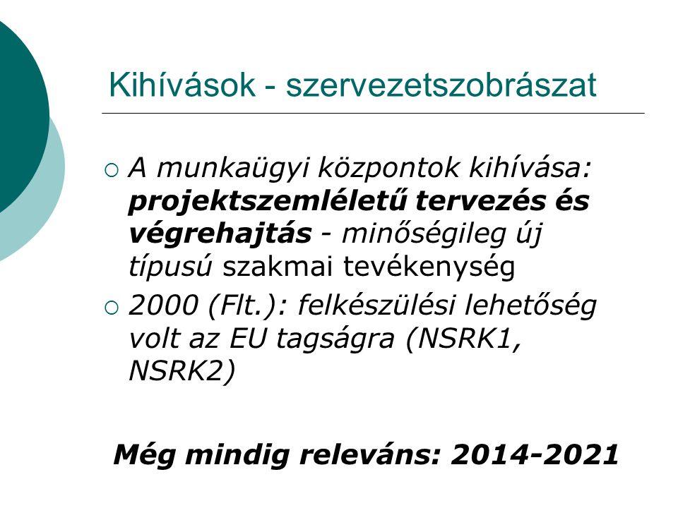 Kihívások - szervezetszobrászat  A munkaügyi központok kihívása: projektszemléletű tervezés és végrehajtás - minőségileg új típusú szakmai tevékenység  2000 (Flt.): felkészülési lehetőség volt az EU tagságra (NSRK1, NSRK2) Még mindig releváns: 2014-2021