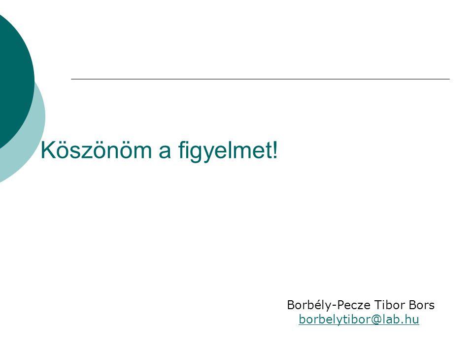 Köszönöm a figyelmet! Borbély-Pecze Tibor Bors borbelytibor@lab.hu