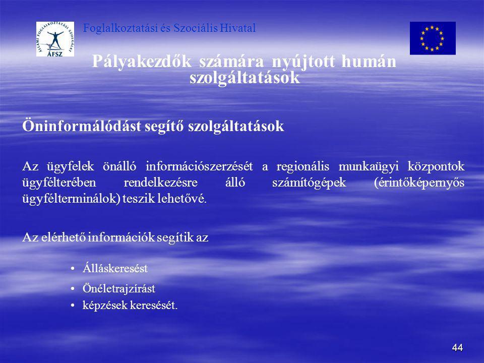 Foglalkoztatási és Szociális Hivatal 44 Pályakezdők számára nyújtott humán szolgáltatások Öninformálódást segítő szolgáltatások Az ügyfelek önálló inf