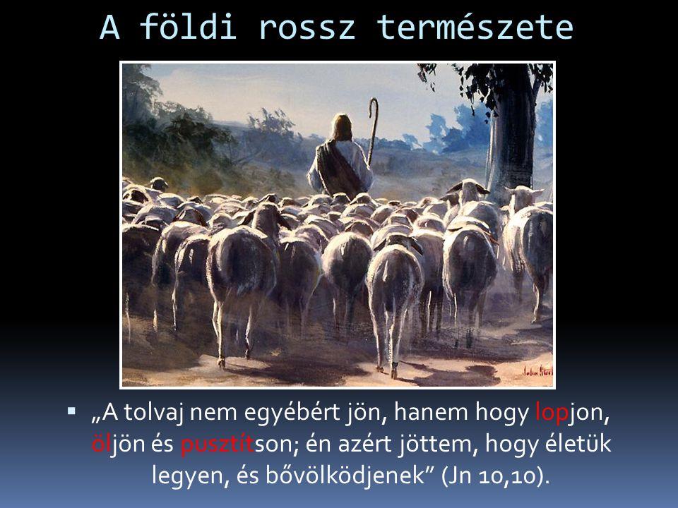 """A földi rossz természete  """"A tolvaj nem egyébért jön, hanem hogy lopjon, öljön és pusztítson; én azért jöttem, hogy életük legyen, és bővölködjenek (Jn 10,10)."""