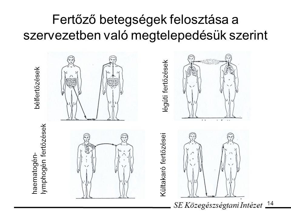 14 Fertőző betegségek felosztása a szervezetben való megtelepedésük szerint SE Közegészségtani Intézet bélfertőzések légúti fertőzések haematogén- lymphogén fertőzések Kültakaró fertőzései