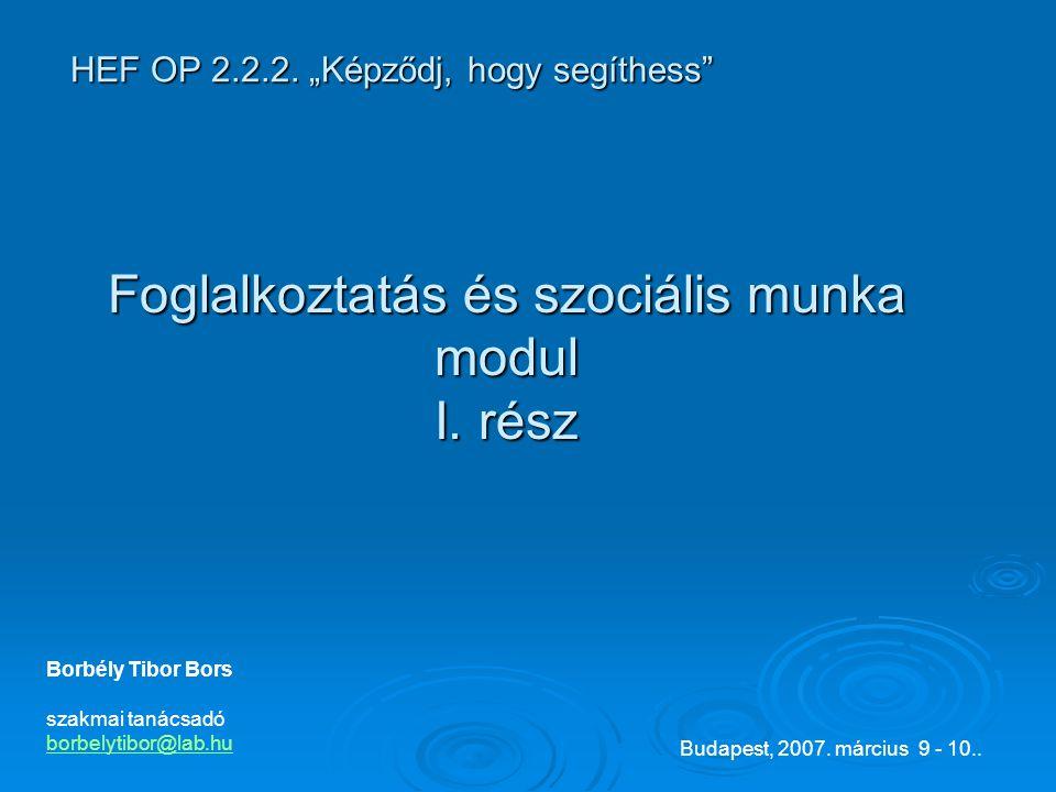 Borbély Tibor Bors szakmai tanácsadó borbelytibor@lab.hu Budapest, 2007.