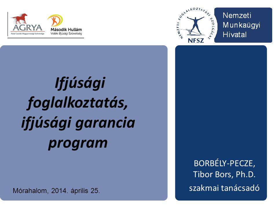 Ifjúsági foglalkoztatás, ifjúsági garancia program BORBÉLY-PECZE, Tibor Bors, Ph.D. szakmai tanácsadó Mórahalom, 2014. április 25.