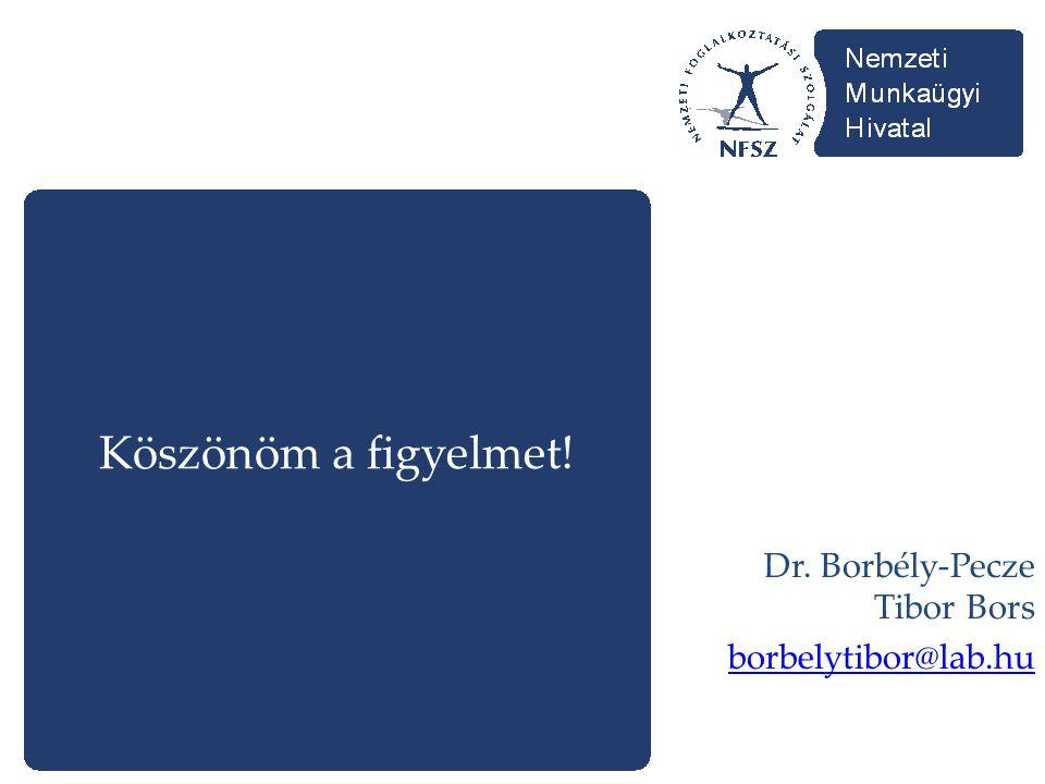 Köszönöm a figyelmet! Dr. Borbély-Pecze Tibor Bors borbelytibor@lab.hu