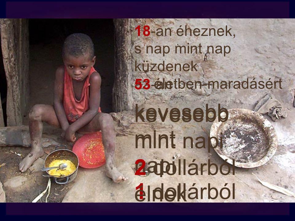 18-an éheznek, s nap mint nap küzdenek az életben-maradásért kevesebb mint napi 1 dollárból 53-an kevesebb mint napi 2 dollárból élnek