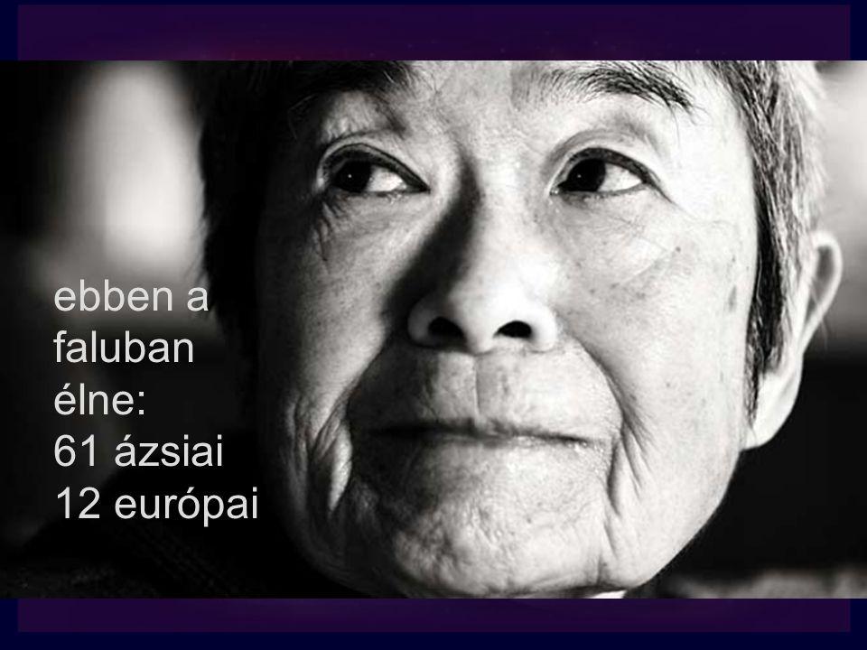ebben a faluban élne: 61 ázsiai 12 európai