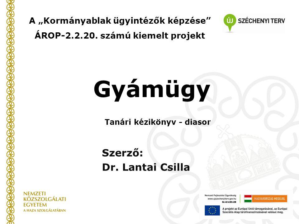 """Gyámügy Szerző: Dr. Lantai Csilla A """"Kormányablak ügyintézők képzése"""" ÁROP-2.2.20. számú kiemelt projekt Tanári kézikönyv - diasor"""