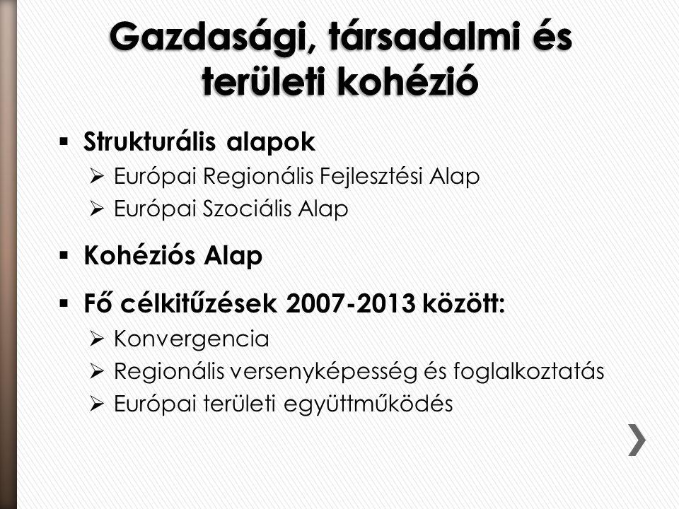  Strukturális alapok  Európai Regionális Fejlesztési Alap  Európai Szociális Alap  Kohéziós Alap  Fő célkitűzések 2007-2013 között:  Konvergencia  Regionális versenyképesség és foglalkoztatás  Európai területi együttműködés