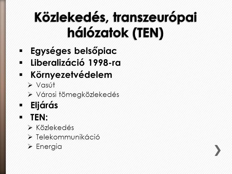  Egységes belsőpiac  Liberalizáció 1998-ra  Környezetvédelem  Vasút  Városi tömegközlekedés  Eljárás  TEN:  Közlekedés  Telekommunikáció  Energia