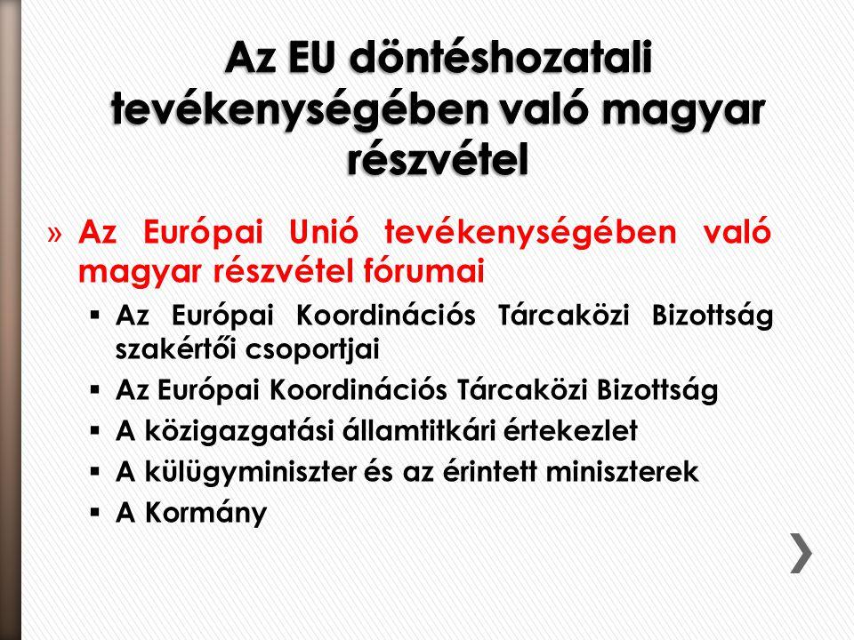 » Az Európai Unió tevékenységében való magyar részvétel fórumai  Az Európai Koordinációs Tárcaközi Bizottság szakértői csoportjai  Az Európai Koordinációs Tárcaközi Bizottság  A közigazgatási államtitkári értekezlet  A külügyminiszter és az érintett miniszterek  A Kormány