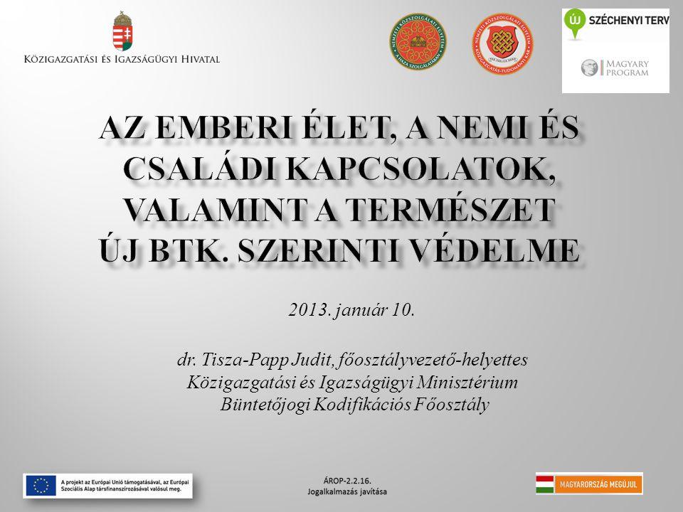 2013. január 10. dr. Tisza-Papp Judit, főosztályvezető-helyettes Közigazgatási és Igazságügyi Minisztérium Büntetőjogi Kodifikációs Főosztály