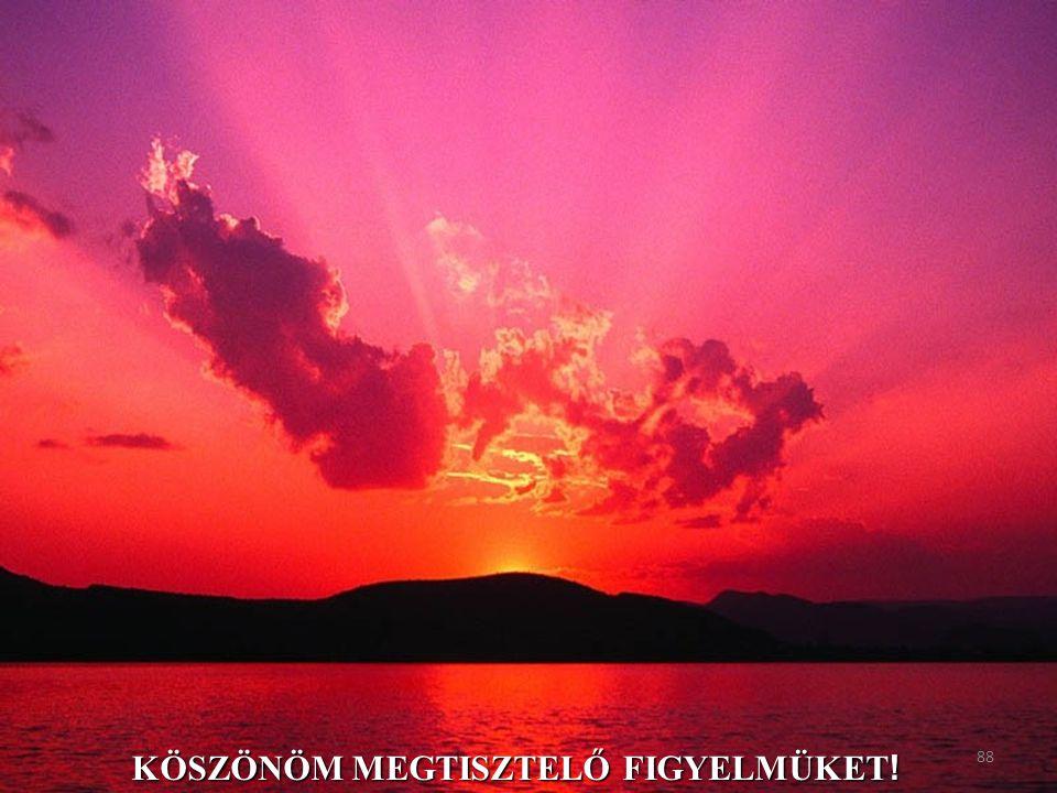 KÖSZÖNÖM MEGTISZTELŐ FIGYELMÜKET ! 88