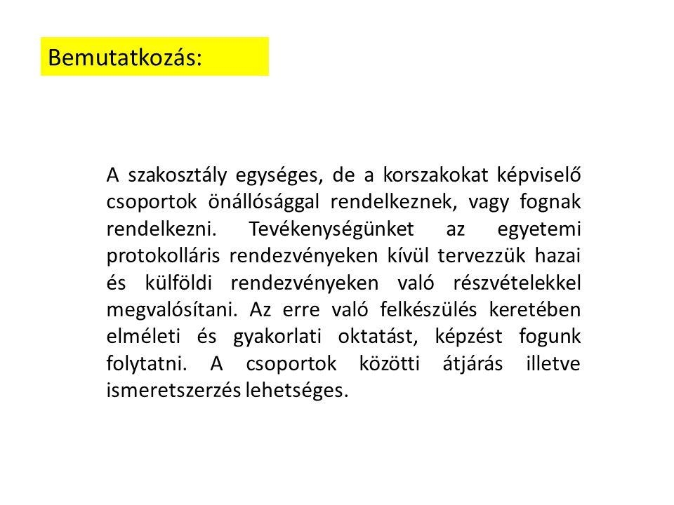 Csapataink A végvári időszak hajdú katonái: Bocskai Angyalai 2014.