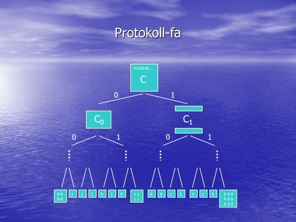 Protokoll-fa C C0C0 0110100... C1C1 01 0101 0 0 0 1 01110100011010