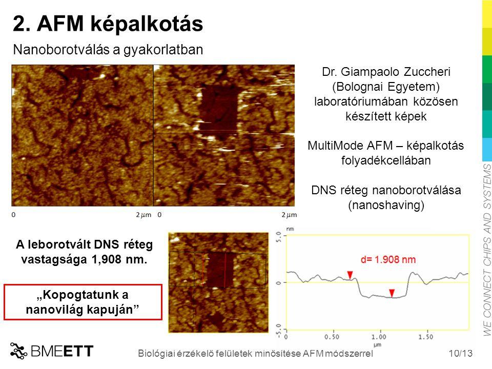 /13 10 Biológiai érzékelő felületek minősítése AFM módszerrel 2. AFM képalkotás Nanoborotválás a gyakorlatban Dr. Giampaolo Zuccheri (Bolognai Egyetem