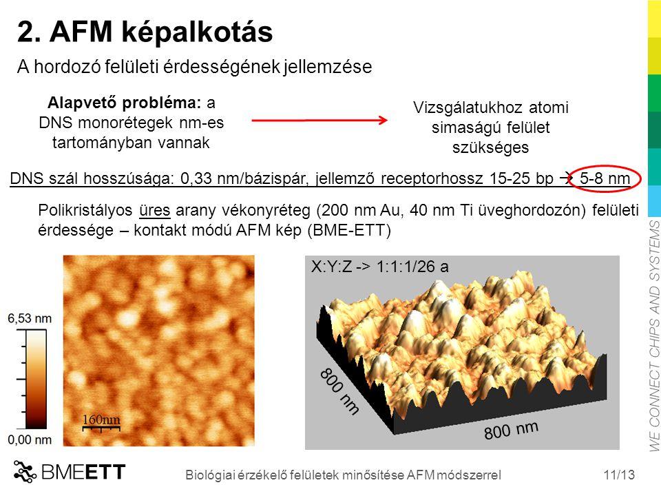 /13 11 Biológiai érzékelő felületek minősítése AFM módszerrel 2. AFM képalkotás A hordozó felületi érdességének jellemzése Vizsgálatukhoz atomi simasá