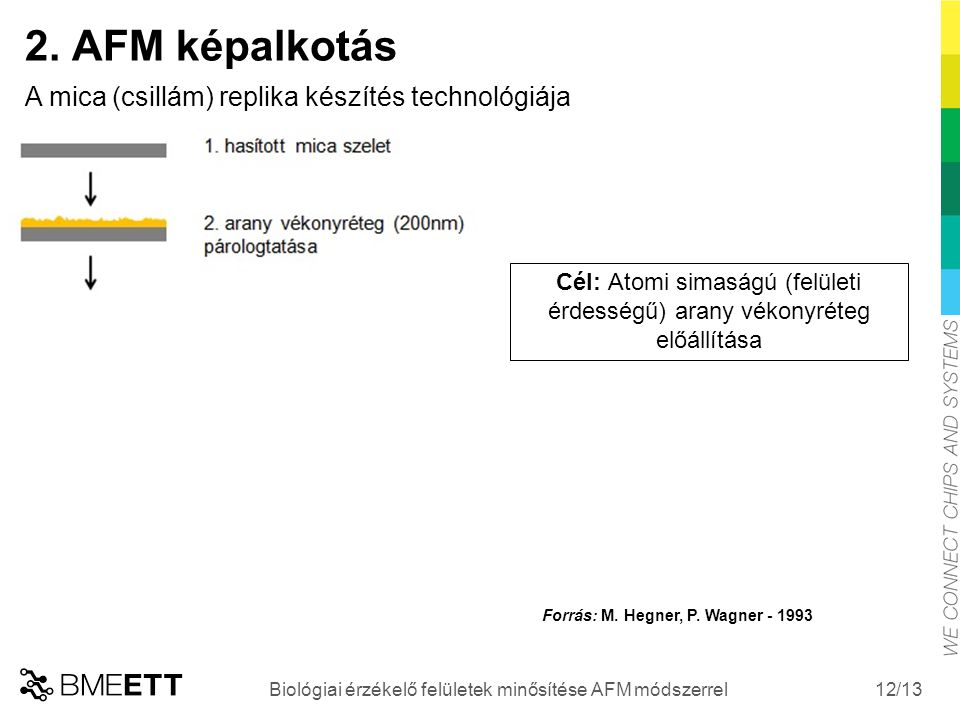 /13 12 Biológiai érzékelő felületek minősítése AFM módszerrel 2. AFM képalkotás A mica (csillám) replika készítés technológiája Cél: Atomi simaságú (f