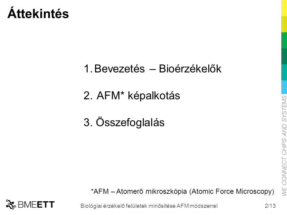 /13 2 1.Bevezetés – Bioérzékelők 2. AFM* képalkotás 3. Összefoglalás *AFM – Atomerő mikroszkópia (Atomic Force Microscopy) Áttekintés Biológiai érzéke