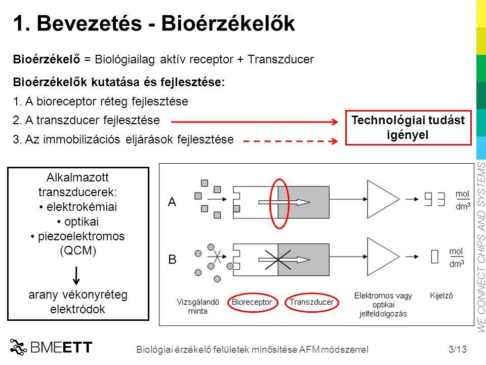 /13 3 1. Bevezetés - Bioérzékelők Bioérzékelő = Biológiailag aktív receptor + Transzducer Bioérzékelők kutatása és fejlesztése: 1. A bioreceptor réteg