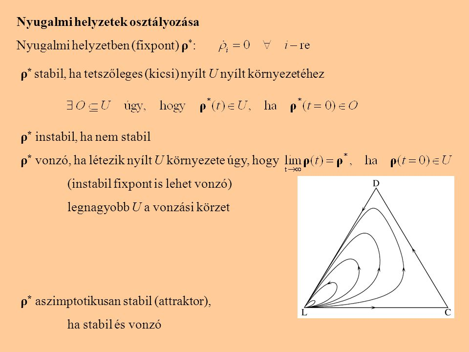 Nyugalmi helyzetek osztályozása Nyugalmi helyzetben (fixpont) ρ * : ρ * stabil, ha tetszőleges (kicsi) nyílt U nyílt környezetéhez ρ * instabil, ha nem stabil ρ * vonzó, ha létezik nyílt U környezete úgy, hogy (instabil fixpont is lehet vonzó) legnagyobb U a vonzási körzet ρ * aszimptotikusan stabil (attraktor), ha stabil és vonzó