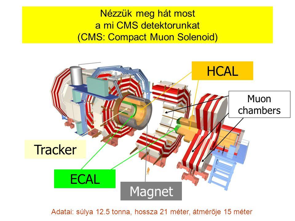 Foglaljuk össze a legfontosabb tudnivalókat a detektorokról: mit-mivel  Itt csak töltött részecskék hagynak nyomot  Itt a fotonok, elektronok megállnak  Itt megállnak a hadronok (p,n, ,) is Eddig csak a müonok jutnak el