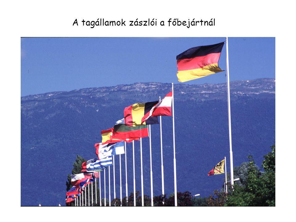 A tagállamok zászlói a főbejártnál