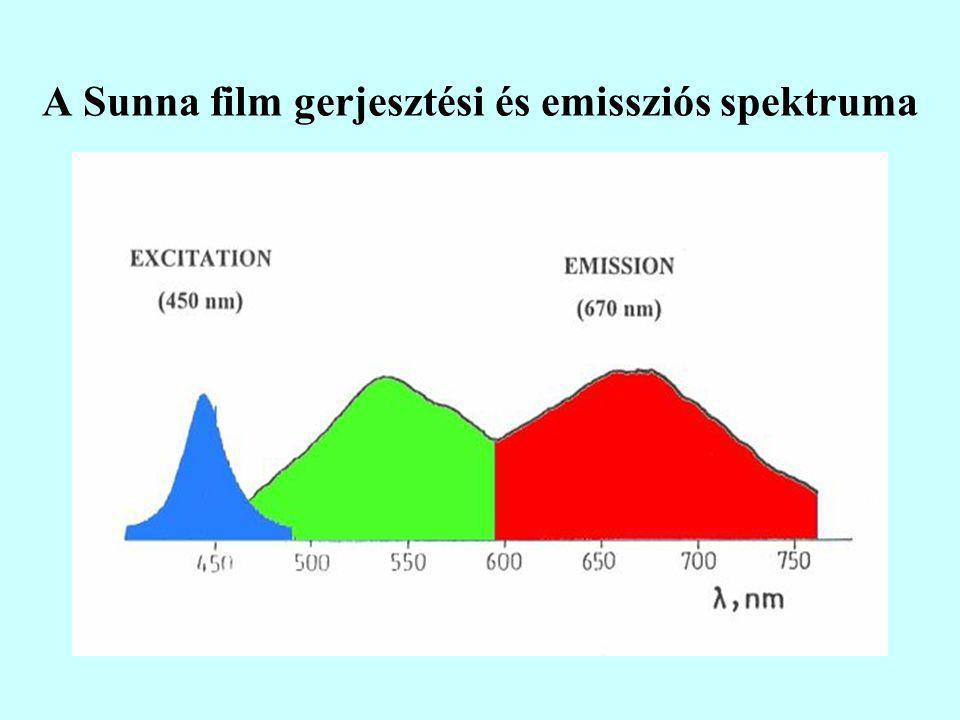 A Sunna film gerjesztési és emissziós spektruma
